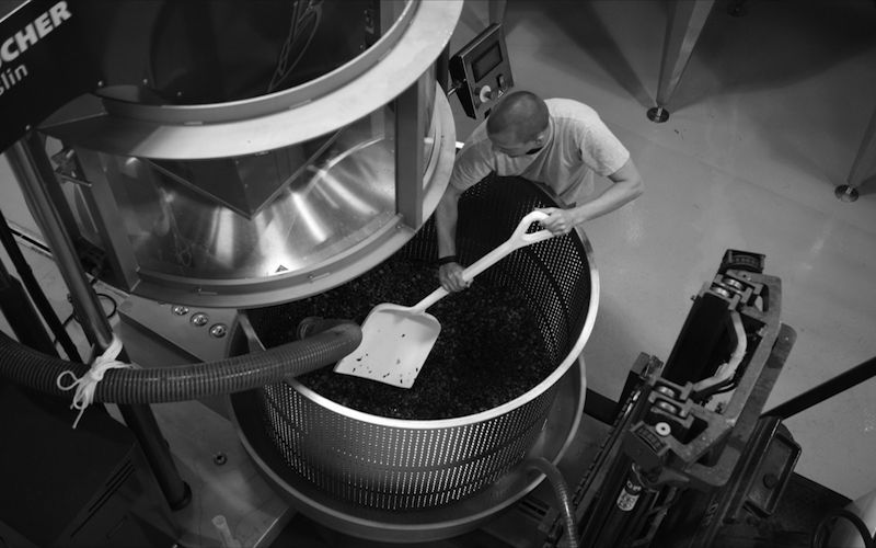 Mixing wind grapes at the Department 66 winery in Maury, France